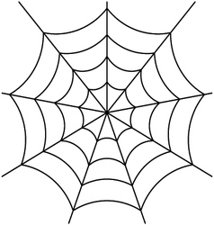 Spider web isolated on white vector