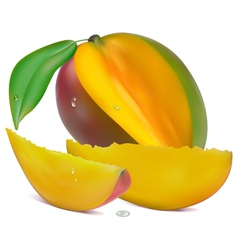 Sliced mango vector