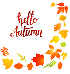Hello autumn lettering with yellow leaves vector
