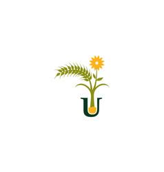 Sun flower letter u vector