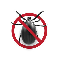 warning sign in black and white harvest bug on a vector image