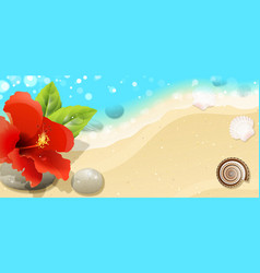 Sea background with red hibiscus vector