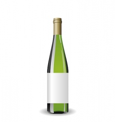 Wine bottle with label vector