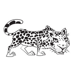 cartoon image of leopard vector image