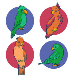 Set of 4 parrots and cockatoo vector