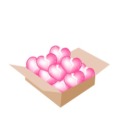 Beautiful little broken hearts in a shipping box vector