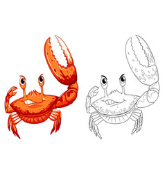 animal outline for crab vector image
