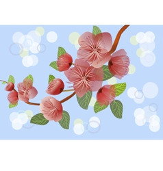 Spring all wakes up flowers sakura vector