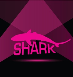 Shark in pink vector
