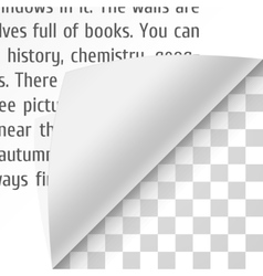 Curl paper corners with text vector