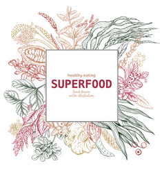 superfood square banner color sketch vector image vector image