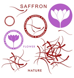 Saffron vector
