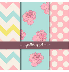 Zigzag rose dot vertical seamless patterns set vector