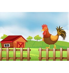A rooster above the fence vector