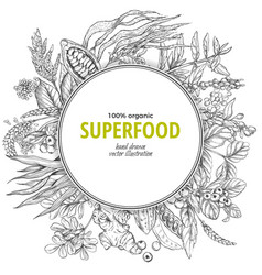 superfood round banner sketch vector image vector image