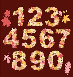 autumn numbers design vector image