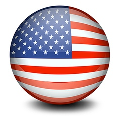 A soccer ball with the flag of the USA vector image