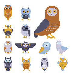 Cartoon owl bird cute character symbol sleep sweet vector