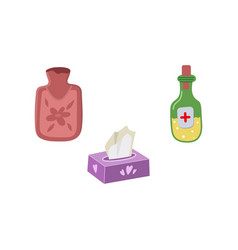 set - hot water bottle napkins medicine vector image