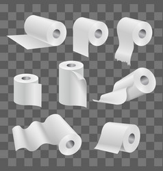 white toilet paper roll and kitchen towels vector image
