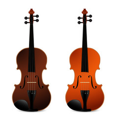 Classical acoustic violins on black background vector