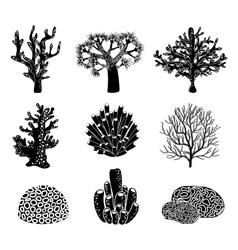 Set of black coral silhouettes vector
