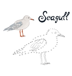 Educational game connect dots to draw seagull bird vector