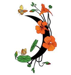 nasturtium butterflies and moon vector image