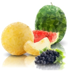 Sprig of grapes melon and watermelon isolated vector
