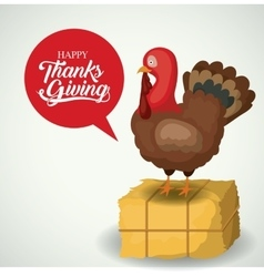 Turkey and hay of thanks given design vector