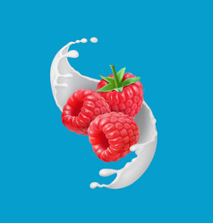 Raspberry fruits and milk splash 3d icon vector