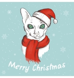 Christmas green eyed cat vector