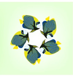 Five swimming fishes emperor angelfish vector