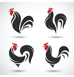 Rooster2 vector