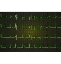 Typical human electrocardiogram bright green vector