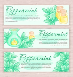 Hand drawn banner with peppermint and oil burner vector