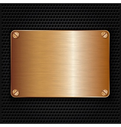 Bronze texture plate with screws vector image vector image