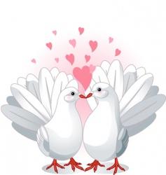 love doves vector image