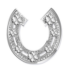 Silver horseshoe on a white background vector
