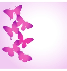 border of butterflies flying vector image