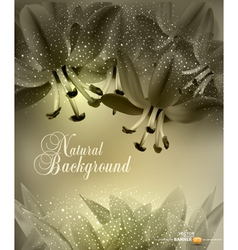 floral congratulatory background vector image vector image