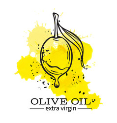 olive with a drop of oil vector image