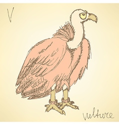 Sketch fancy vulture in vintage style vector