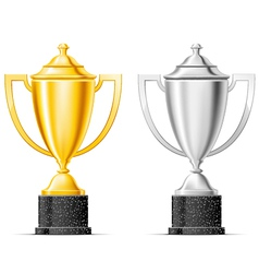 gold and silver cup vector image