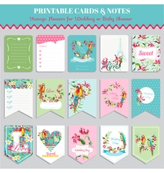 Tropical flowers and parrot birds card set vector