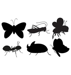 Black colored insects vector