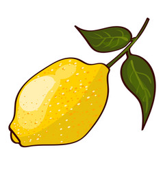 Bright fresh ripe lemon concept vector