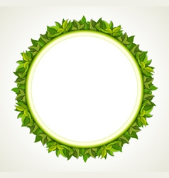 green leaves round frame vector image