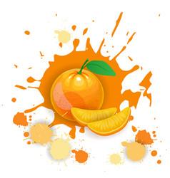 orange fruit logo watercolor splash design fresh vector image