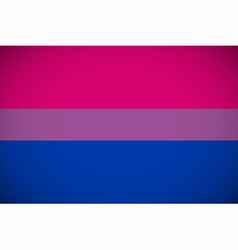 Bisexual pride flag vector